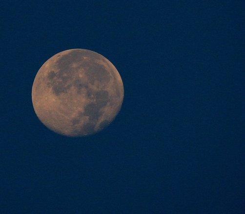 harvest-moon-1314157.jpg